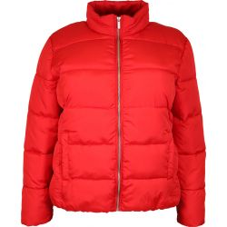 Cassiopeia / Mino jakke